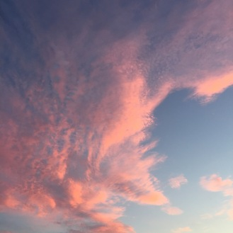 The Unfiltered Sky
