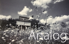 AnalogTitle